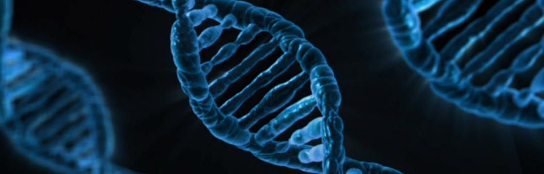 Does your agency have business development in it's DNA?