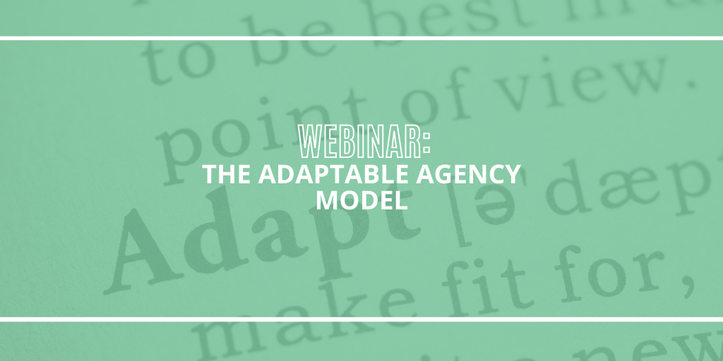 The Adaptable Agency Model